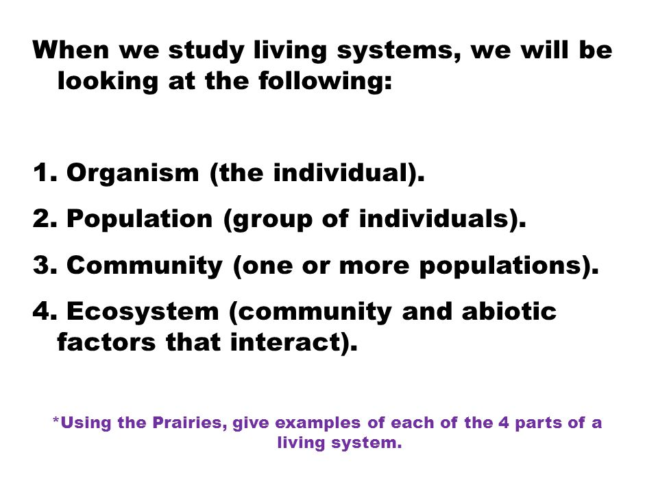 When we study living systems, we will be looking at the following: