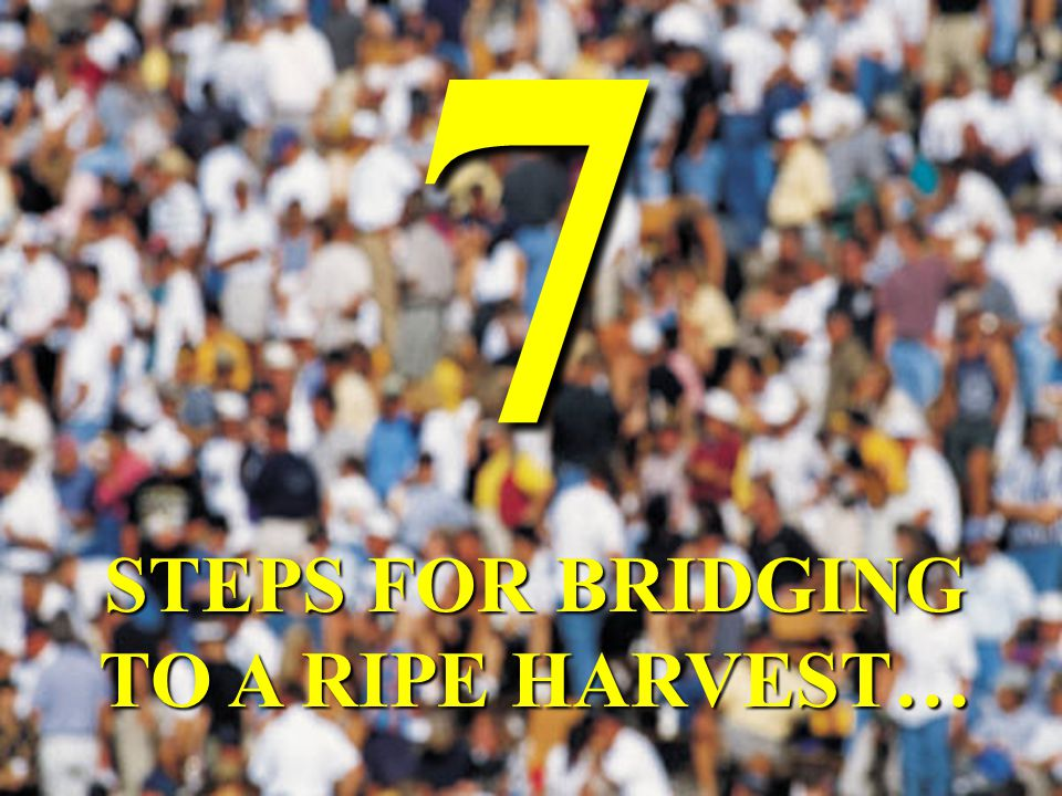 STEPS FOR BRIDGING TO A RIPE HARVEST…