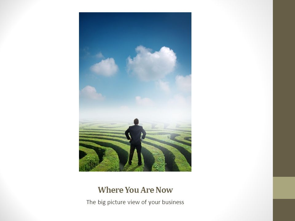 The big picture view of your business