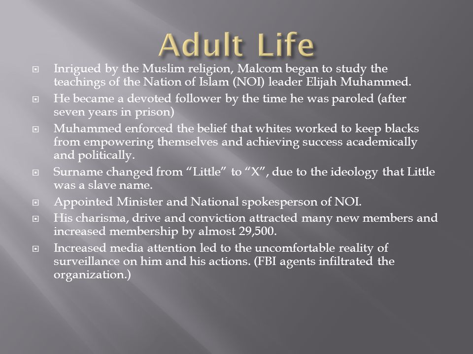 Adult Life Inrigued by the Muslim religion, Malcom began to study the teachings of the Nation of Islam (NOI) leader Elijah Muhammed.