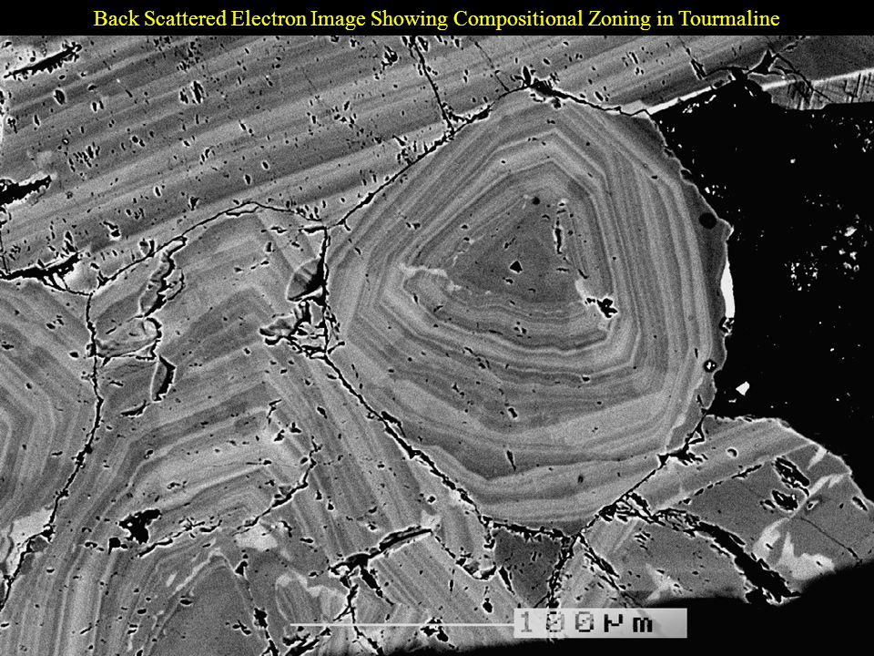 Back Scattered Electron Image Showing Compositional Zoning in Tourmaline