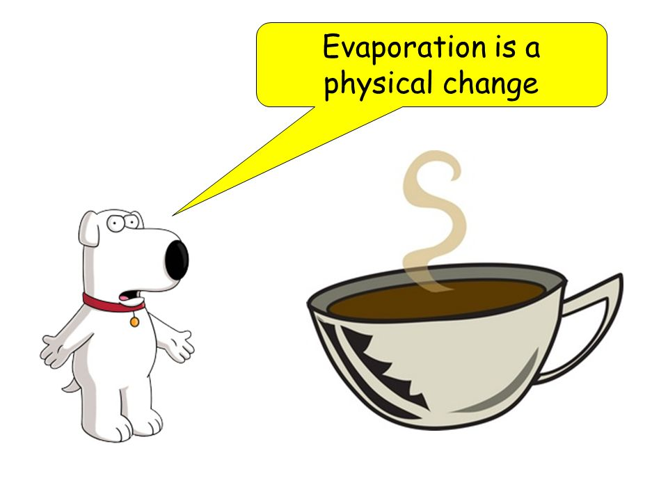 Evaporation is a physical change