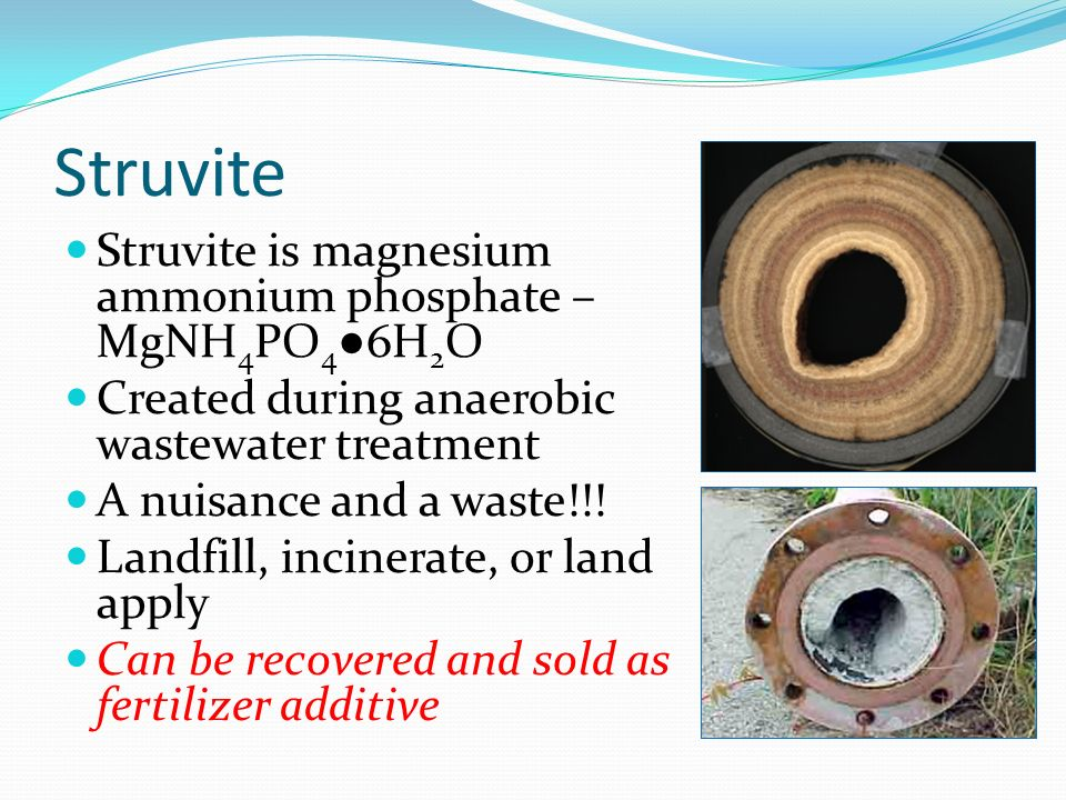 Struvite Struvite is magnesium ammonium phosphate – MgNH4PO4●6H2O