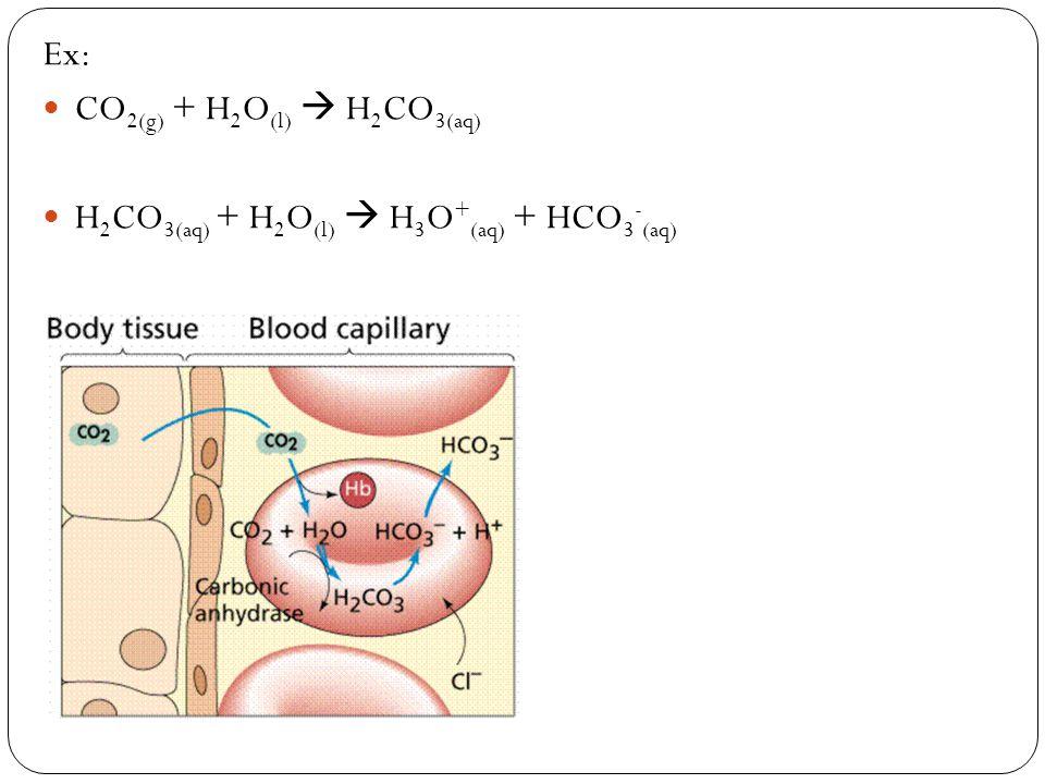 Ex: CO2(g) + H2O(l)  H2CO3(aq) H2CO3(aq) + H2O(l)  H3O+(aq) + HCO3-(aq)
