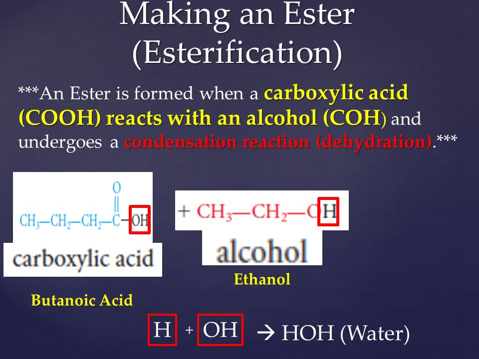 Making an Ester (Esterification)