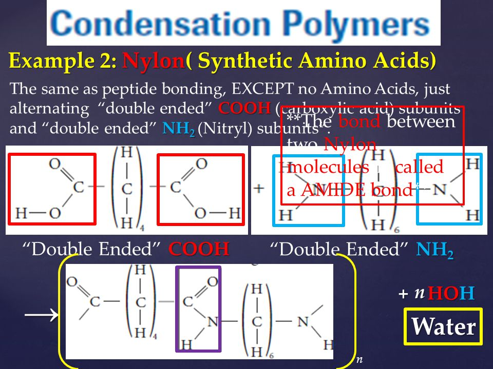 → Water Example 2: Nylon( Synthetic Amino Acids)