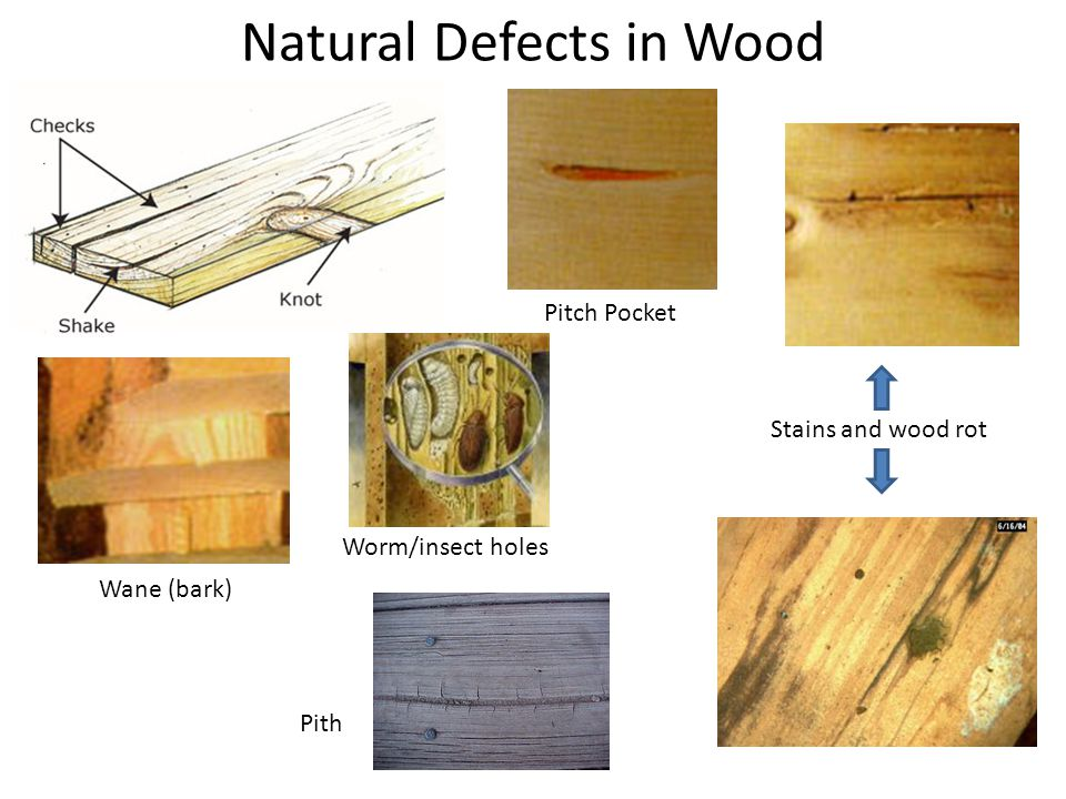 Natural Defects in Wood