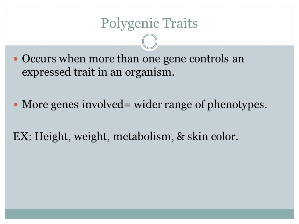 Polygenic Traits Occurs when more than one gene controls an expressed trait in an organism. More genes involved= wider range of phenotypes.