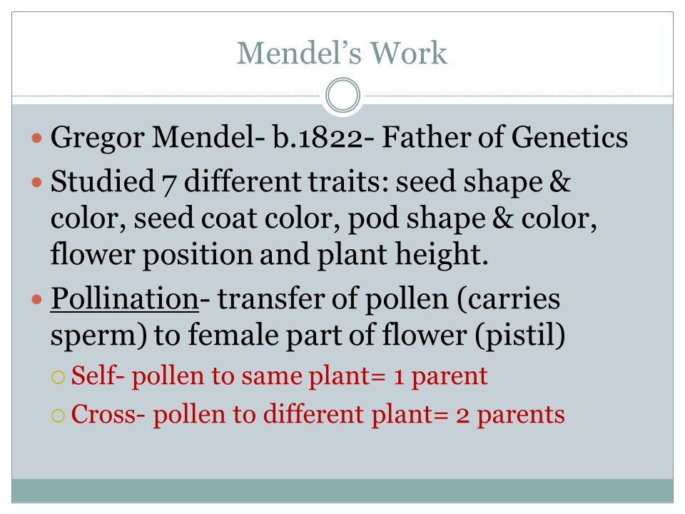 Mendel's Work Gregor Mendel- b Father of Genetics