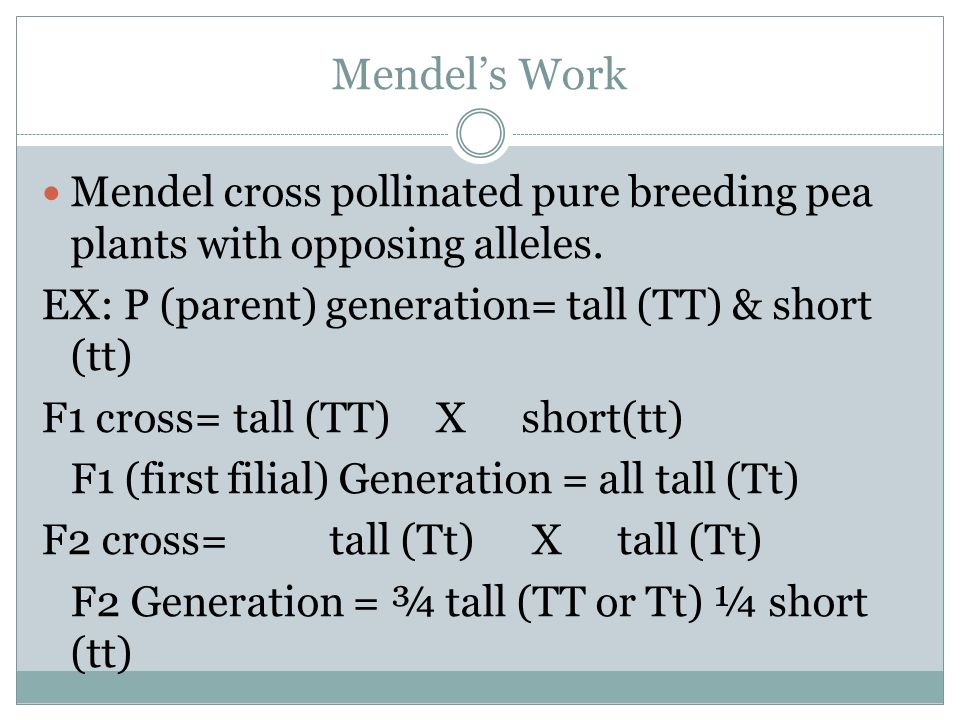 Mendel's Work Mendel cross pollinated pure breeding pea plants with opposing alleles. EX: P (parent) generation= tall (TT) & short (tt)