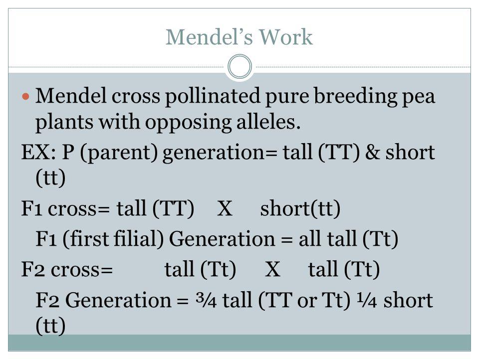 Mendel's Work Mendel cross pollinated pure breeding pea plants with opposing alleles. EX: P (parent) generation= tall (TT) & short (tt)