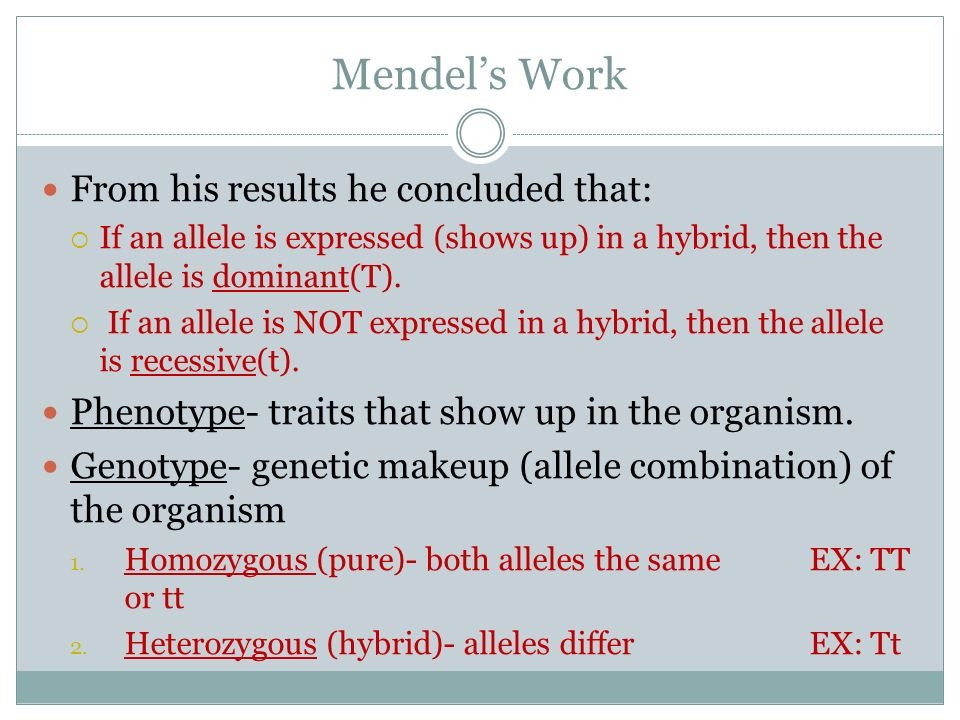 Mendel's Work From his results he concluded that: