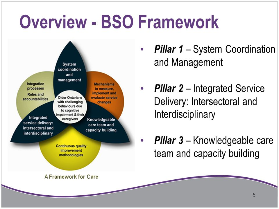 Overview - BSO Framework
