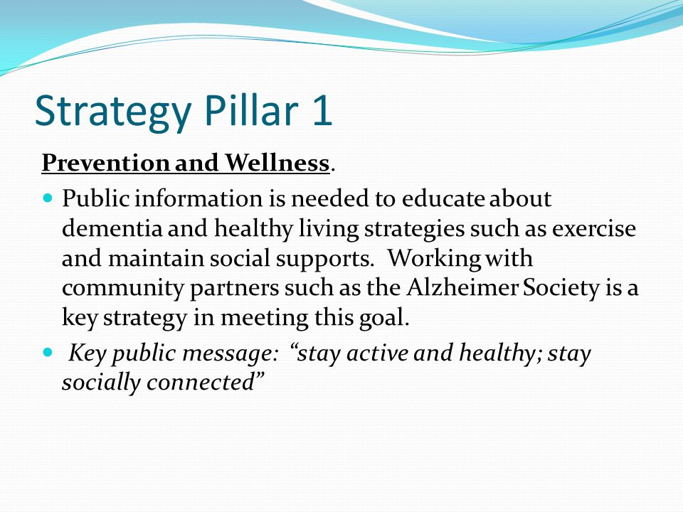 Strategy Pillar 1 Prevention and Wellness.