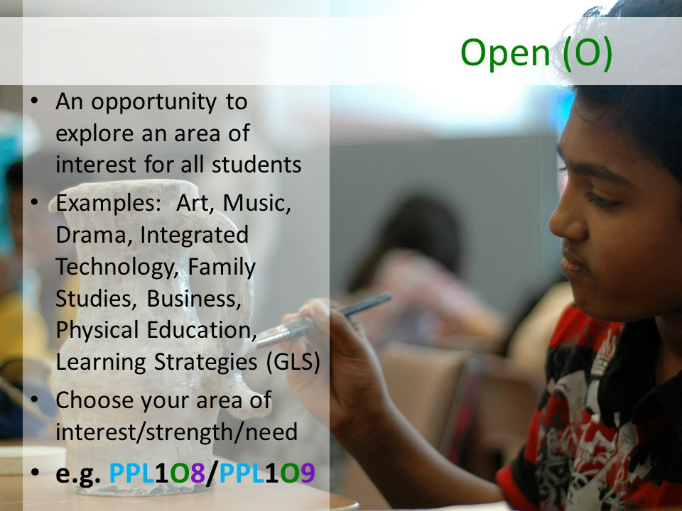 An opportunity to explore an area of interest for all students