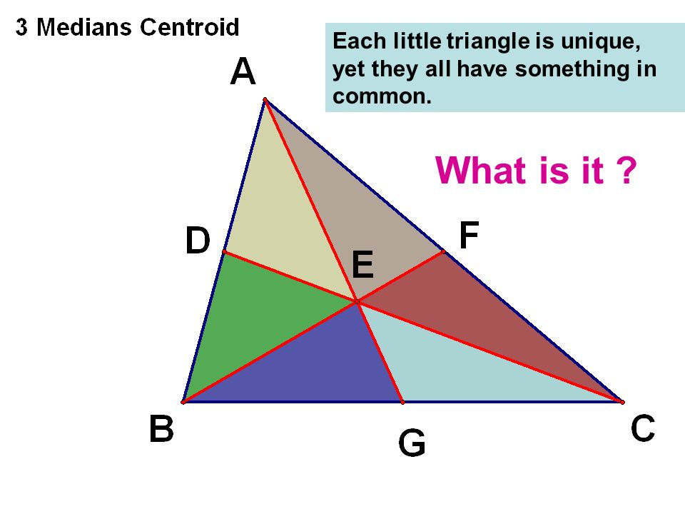 Each little triangle is unique, yet they all have something in common.