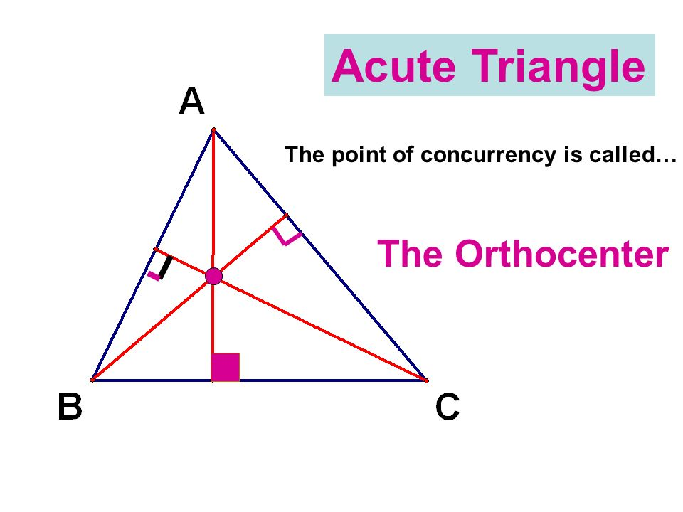 Acute Triangle The point of concurrency is called… The Orthocenter