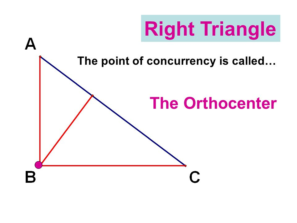 Right Triangle The point of concurrency is called… The Orthocenter