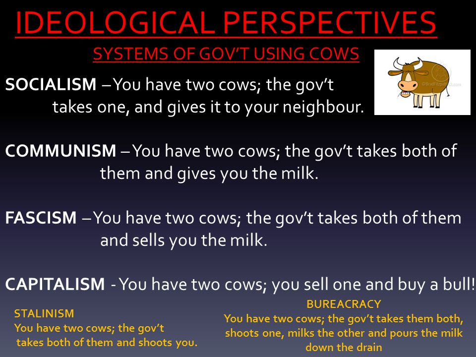 IDEOLOGICAL PERSPECTIVES SYSTEMS OF GOV'T USING COWS