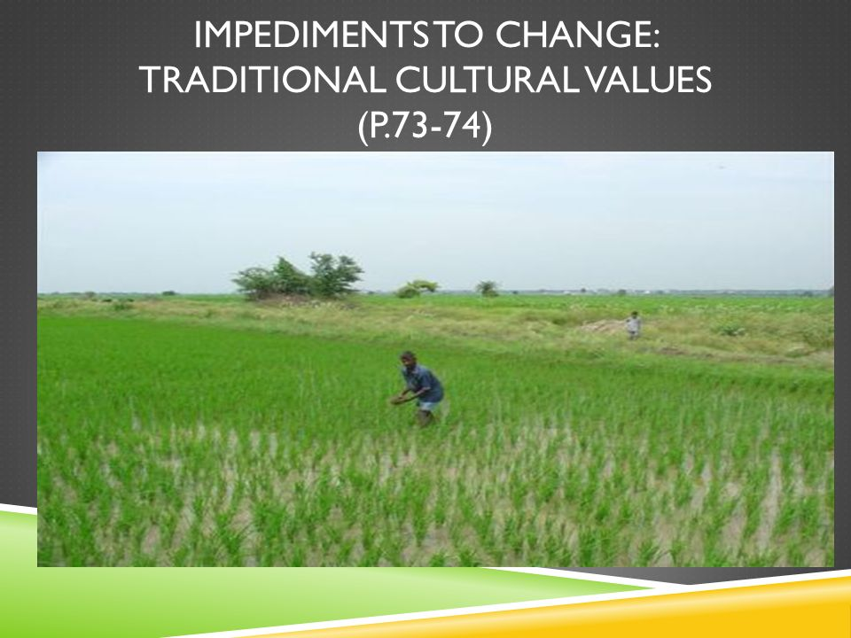 Impediments TO CHANGE: Traditional cultural values (p.73-74)