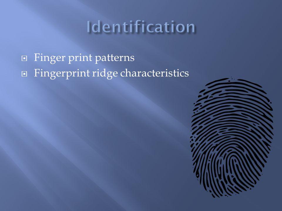 Identification Finger print patterns Fingerprint ridge characteristics