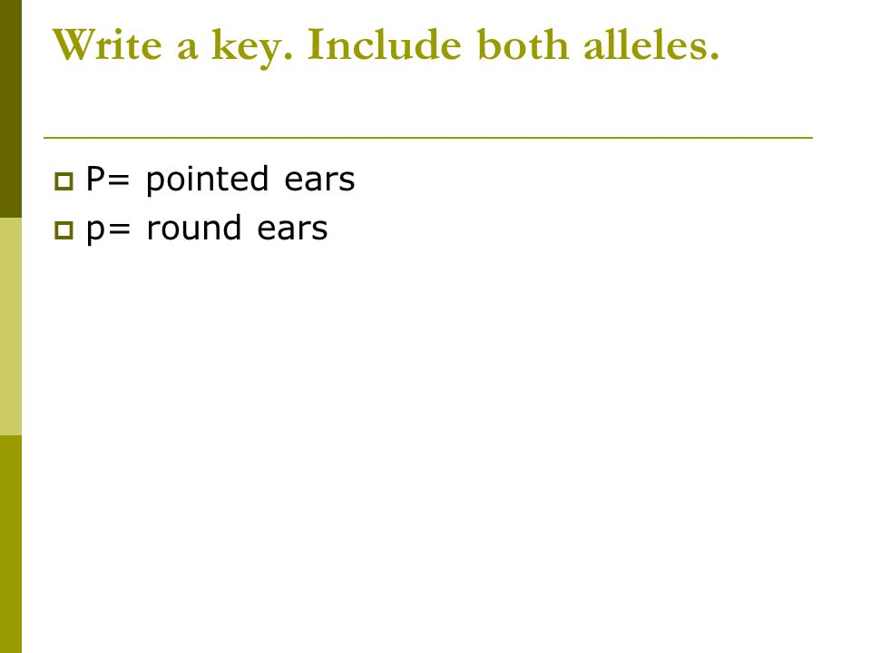 Write a key. Include both alleles.