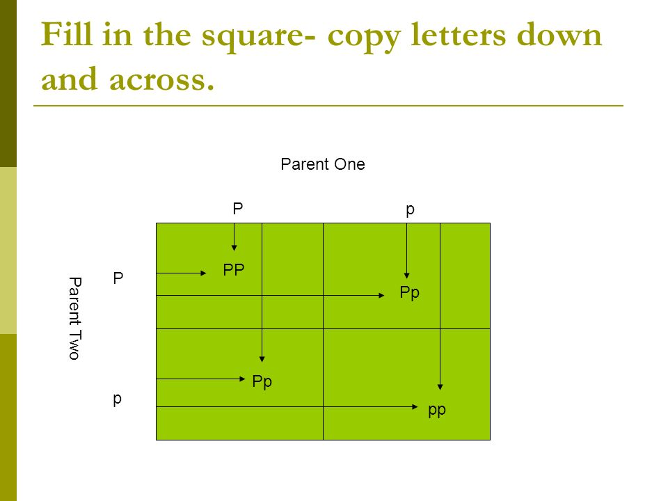 Fill in the square- copy letters down and across.
