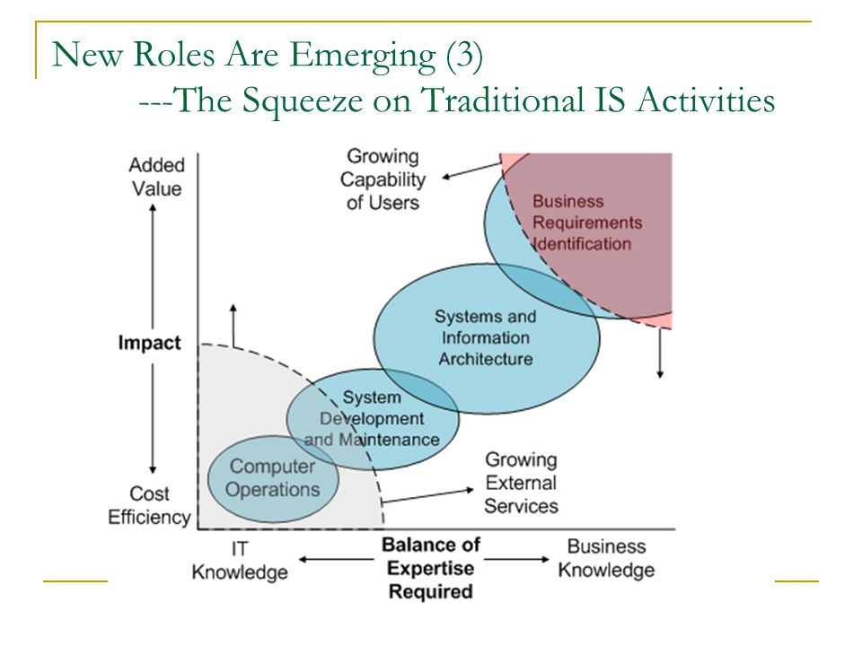 New Roles Are Emerging (3) ---The Squeeze on Traditional IS Activities