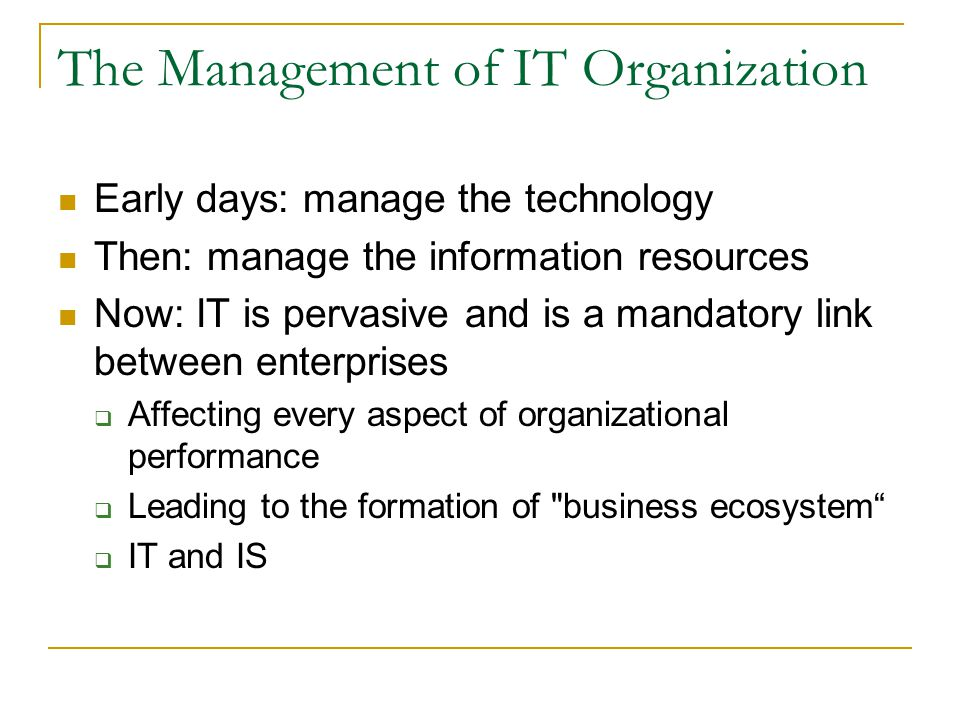 The Management of IT Organization