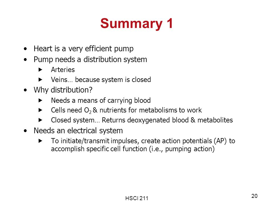 Summary 1 Heart is a very efficient pump