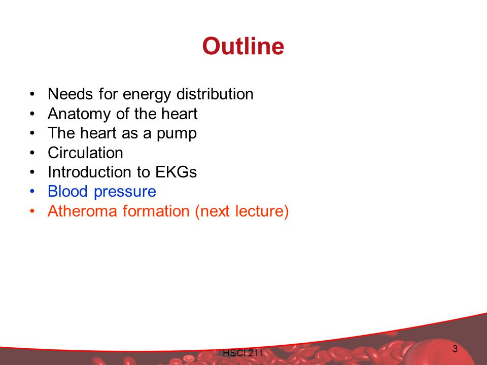 Outline Needs for energy distribution Anatomy of the heart