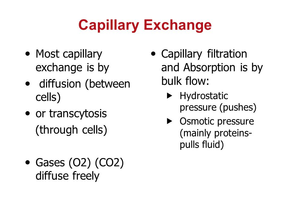 Capillary Exchange Most capillary exchange is by