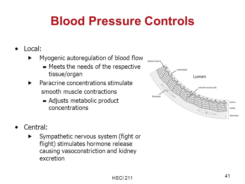 Blood Pressure Controls