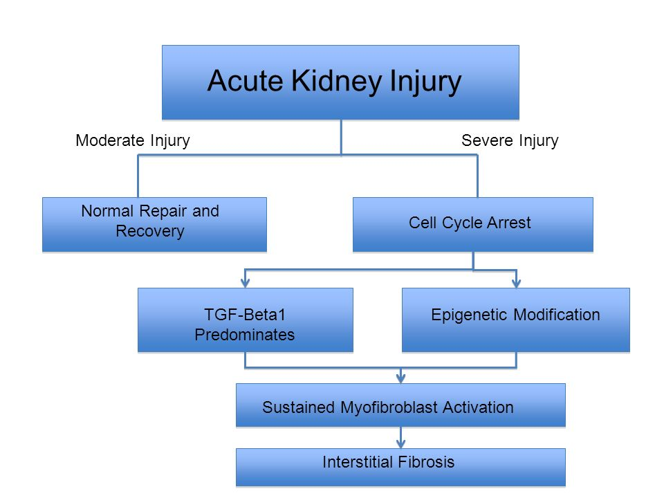 Acute Kidney Injury Moderate Injury Severe Injury