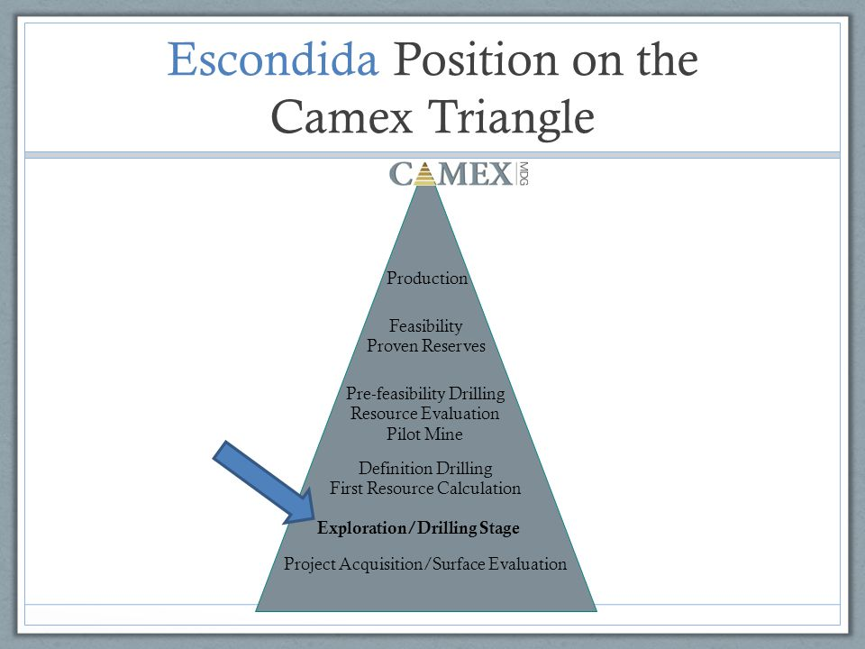 Escondida Position on the Camex Triangle