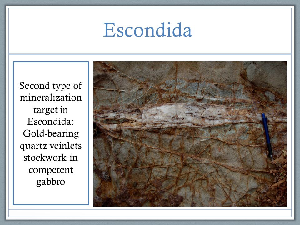 Escondida Second type of mineralization target in Escondida: Gold-bearing quartz veinlets stockwork in competent gabbro.