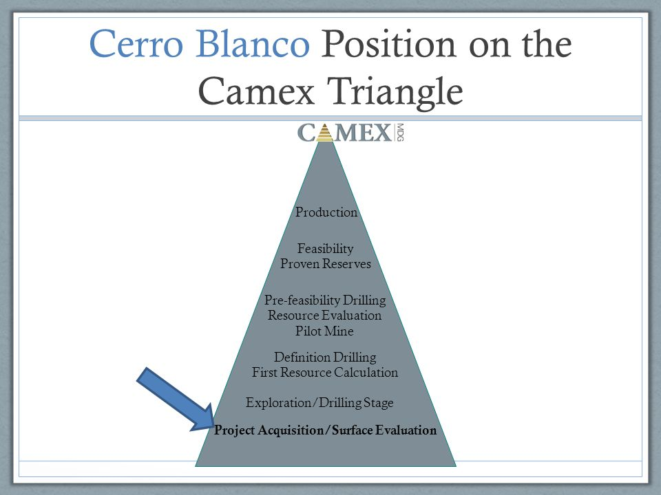 Cerro Blanco Position on the Camex Triangle