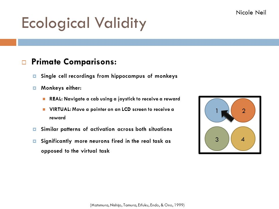 Ecological Validity Primate Comparisons: Nicole Neil