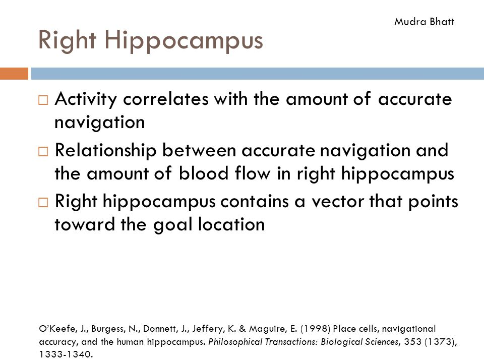 Right Hippocampus Mudra Bhatt. Activity correlates with the amount of accurate navigation.