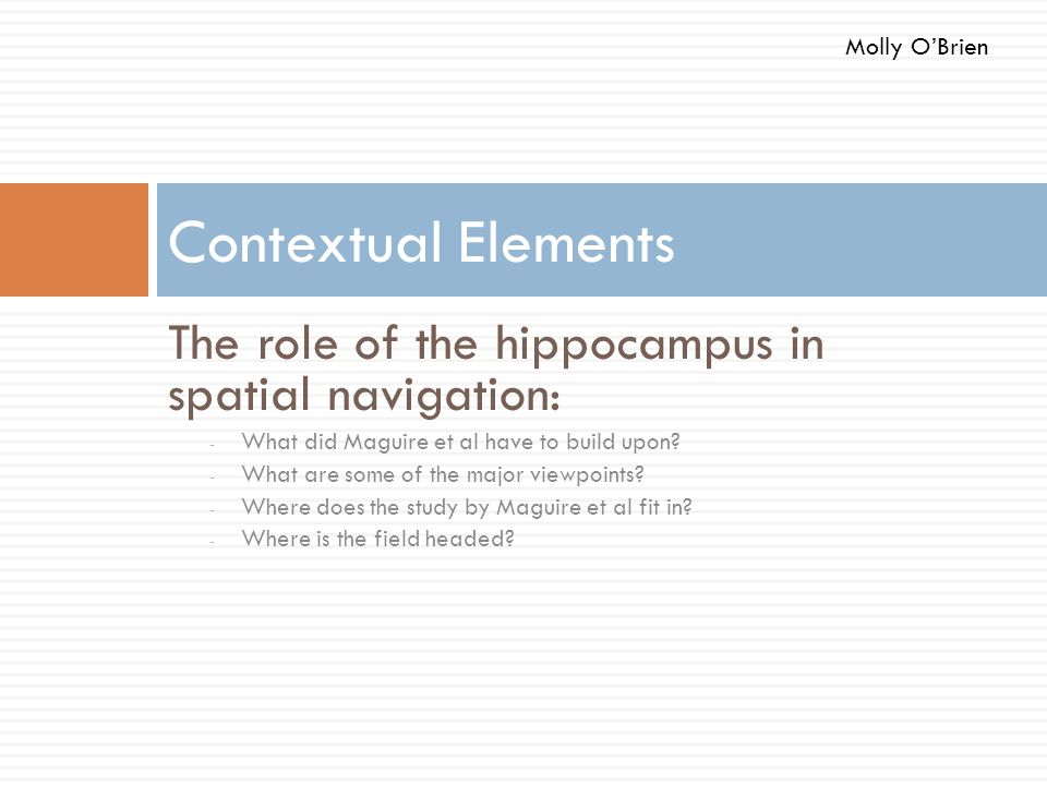Contextual Elements The role of the hippocampus in spatial navigation: