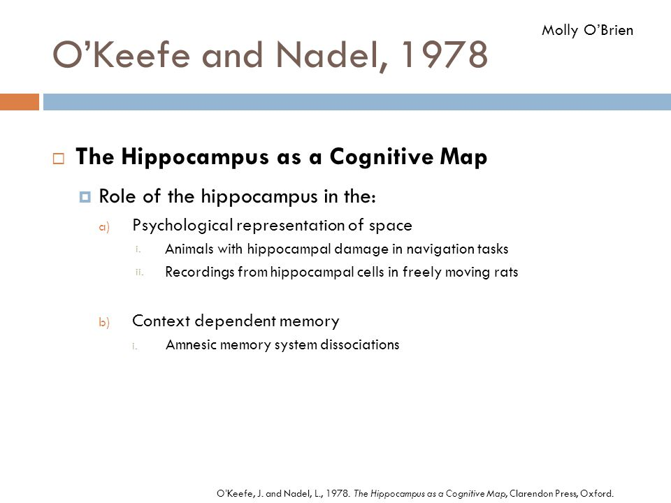 O'Keefe and Nadel, 1978 The Hippocampus as a Cognitive Map
