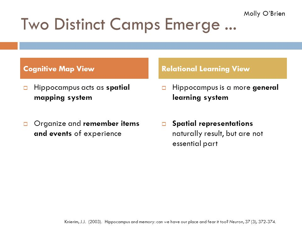 Two Distinct Camps Emerge ...
