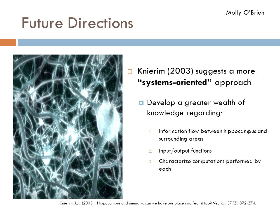 Future Directions Molly O'Brien. Knierim (2003) suggests a more systems-oriented approach. Develop a greater wealth of knowledge regarding: