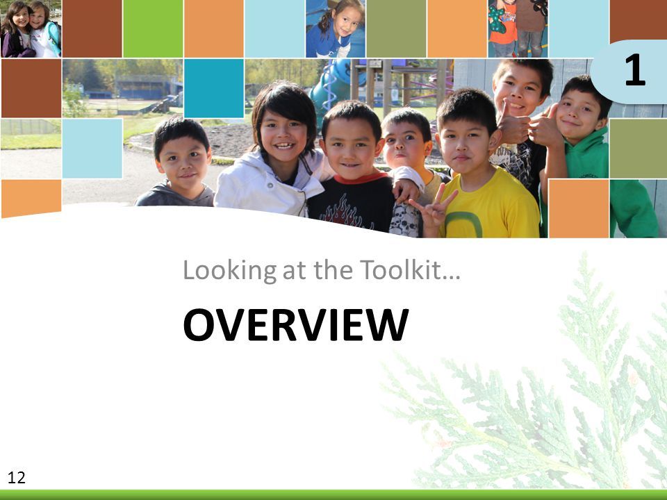1 Looking at the Toolkit… Overview