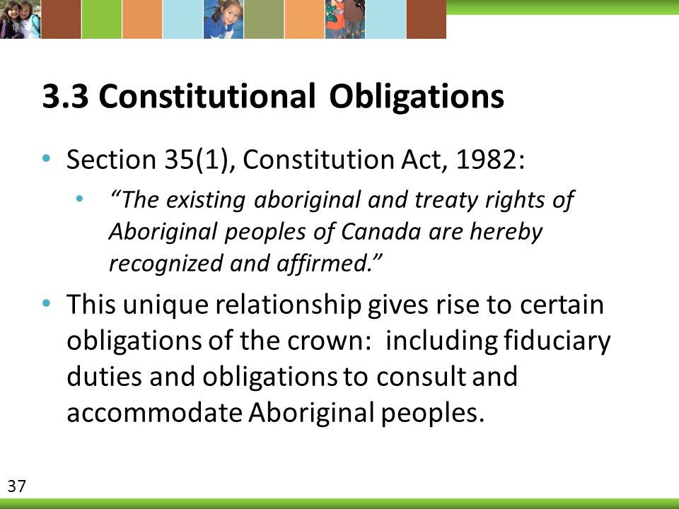 3.3 Constitutional Obligations