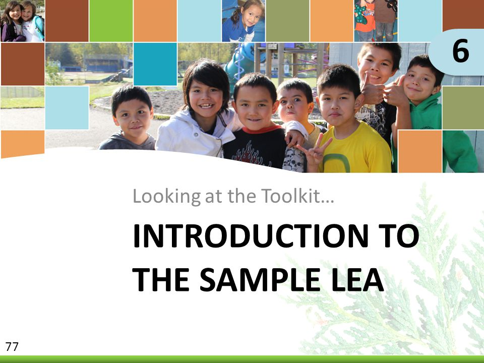 Introduction to the Sample LEA