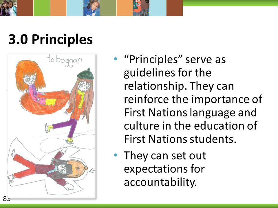 3.0 Principles