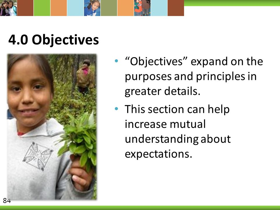 4.0 Objectives Objectives expand on the purposes and principles in greater details.