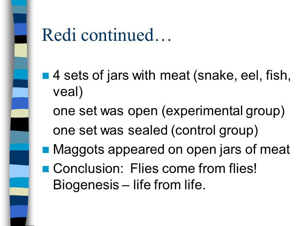Redi continued… 4 sets of jars with meat (snake, eel, fish, veal)