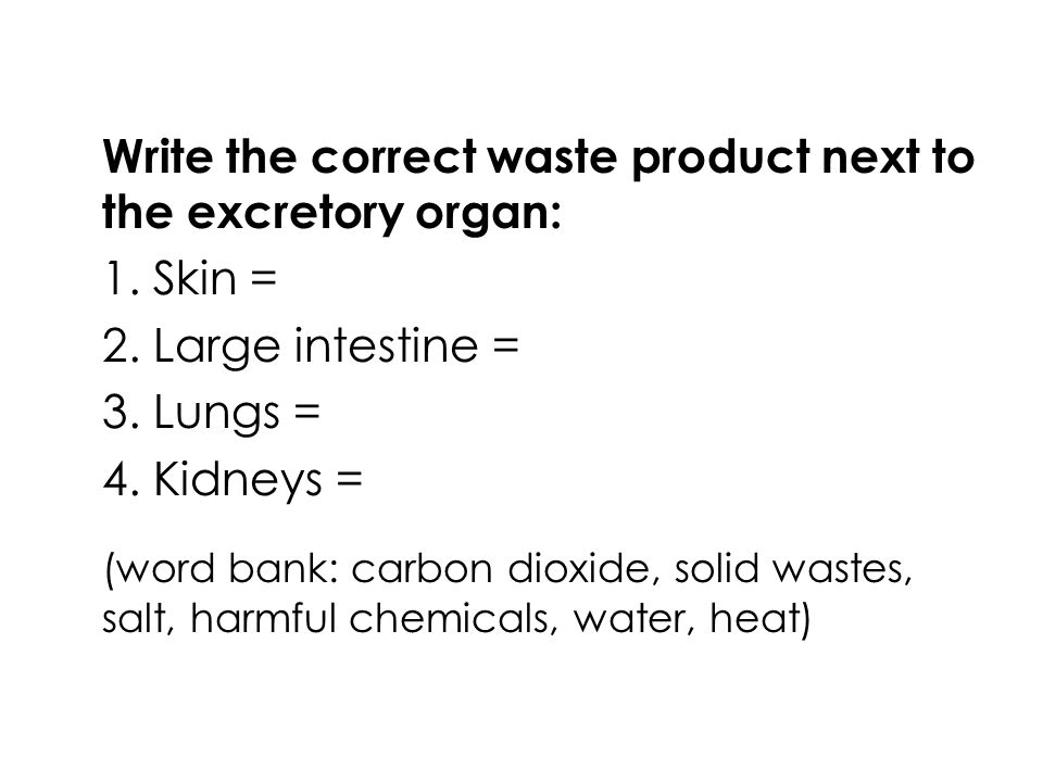 Write the correct waste product next to the excretory organ:
